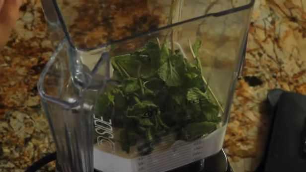 Benefits of Algae